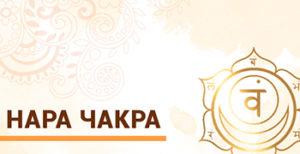 Курс Ведической Астрологии Джйотиш. Нара Чакра. Техники подбора мантр для здоровья.